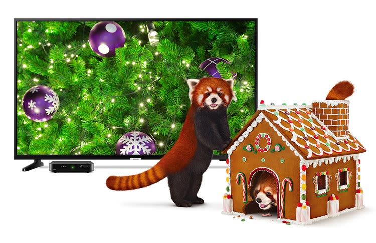 Red Panda Standing Next to Gingerbread House in Front of Samsung TV