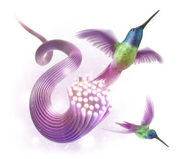 swirl-cable-two-hummingbirds