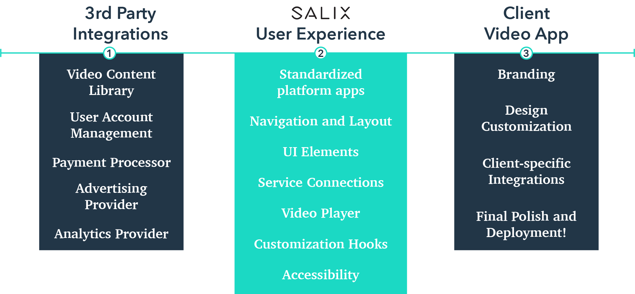 Salix blog graphic