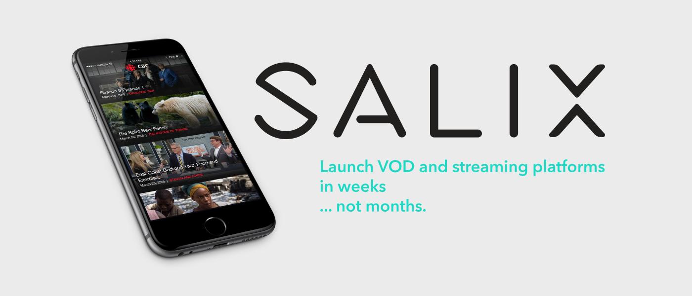 YouTube, Netflix, Hulu, and    Salix?