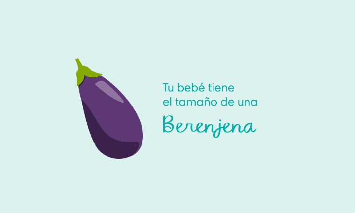 Your baby is the size of an eggplant