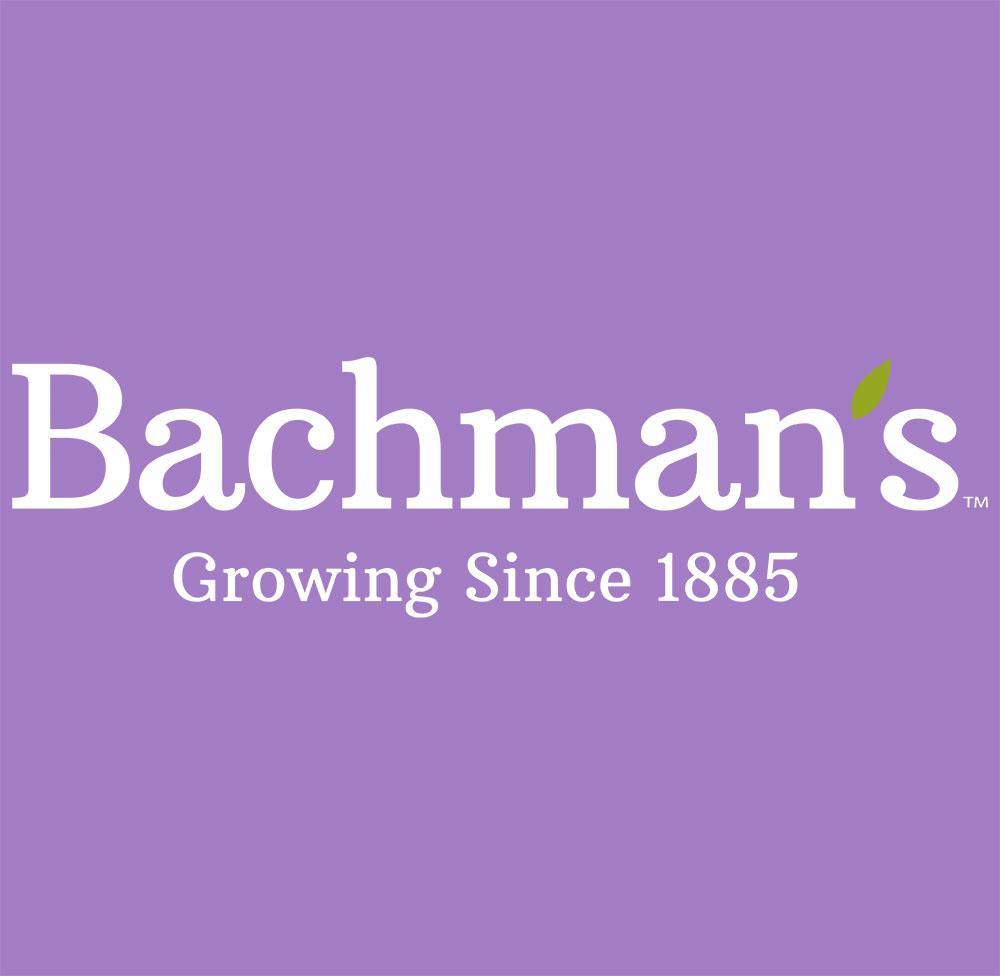 Popular stores for bachmans.com