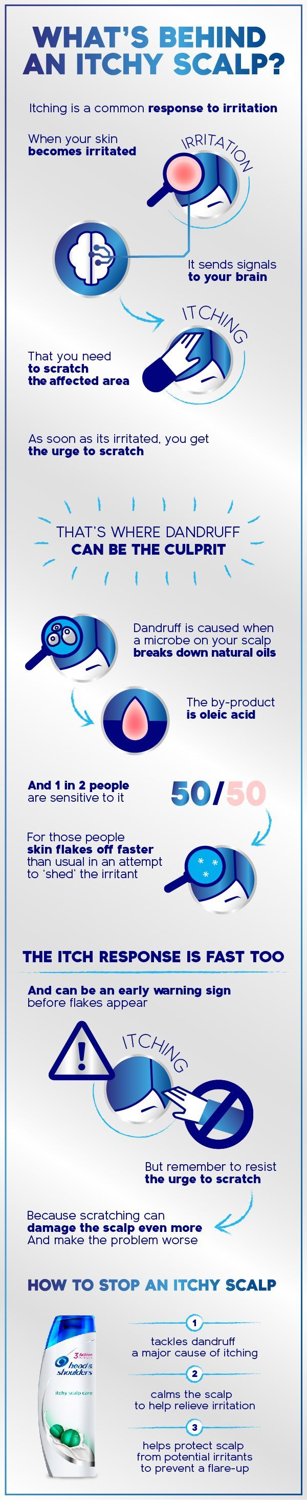 ItchyScalp infographic with product 500