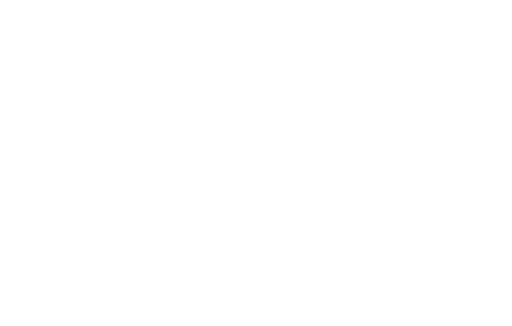 Stumptown Logo White