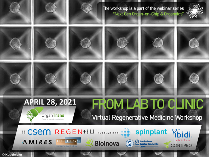 Virtual-Regenerative-Medicine-Workshop-Banner Bedoni