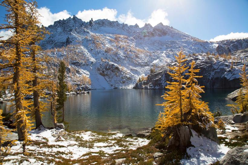 larches enchantments