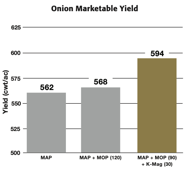 K-Mag® Onion Blend Study - Results