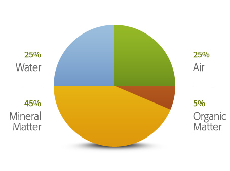 kir-profili grafik
