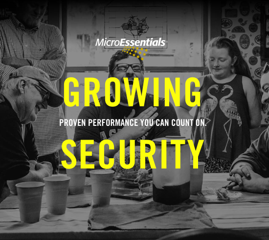 MicroEssentials: Growing Security