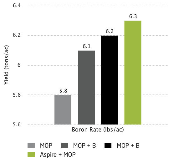 Boron Rate