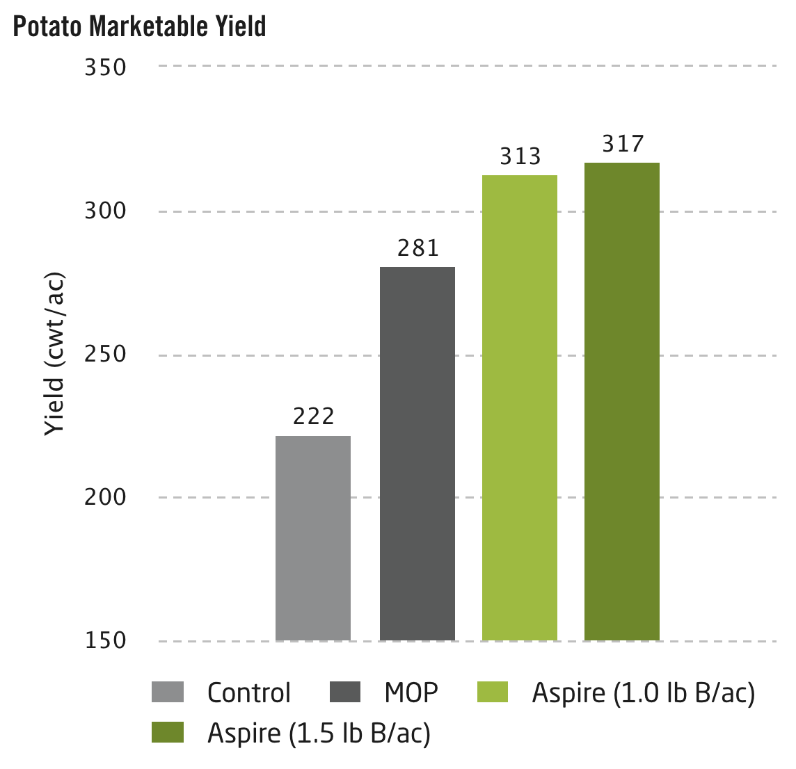 Potato Marketable Yield