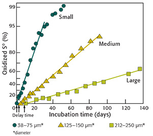 Fig. 3: Effect of elemental S (S⁰) particle size on the rate of oxidation in soil where particles were dispersed throughout the soil (Watkinson and Blair 1993).