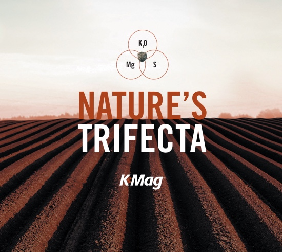 K-Mag: Nature's Trifecta