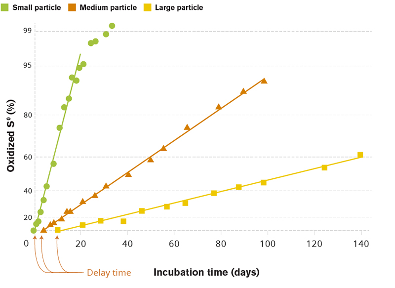 Figure 3: Effect of elemental S (S⁰) particle size on the rate of oxidation in soil where particles were dispersed throughout the soil.