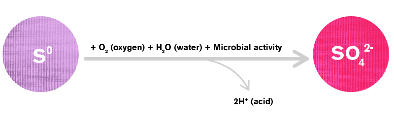 Figure 1: The reaction of elemental S (S⁰) oxidation in soils to sulfate (SO₄²⁻).