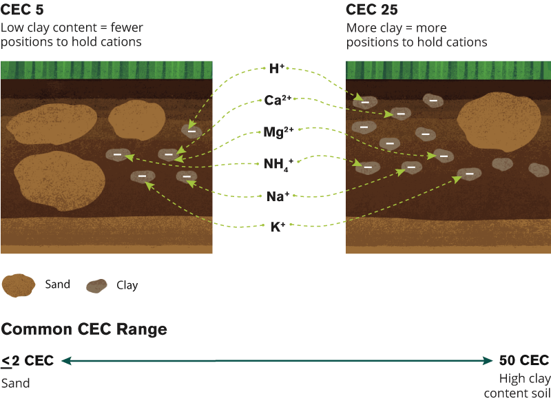 cec-soil-analysis
