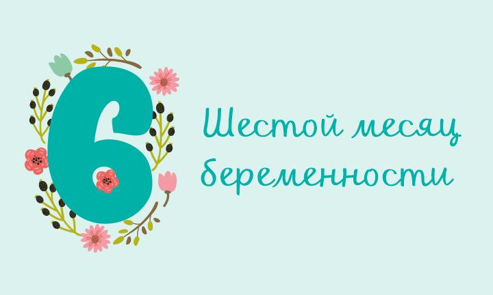 Беременность месяц за месяцем: шестой месяц