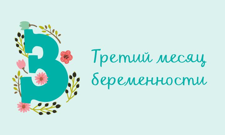 Беременность месяц за месяцем: третий месяц
