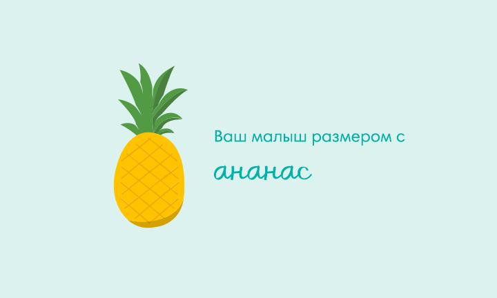 33-я неделя беременности  Ваш малыш размером с  ананас