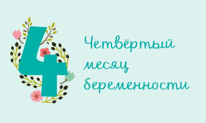 Беременность месяц за месяцем: четвертый месяц