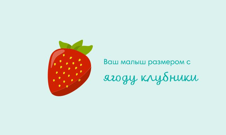 Десятая неделя беременности  Ваш малыш размером с  ягоду клубники