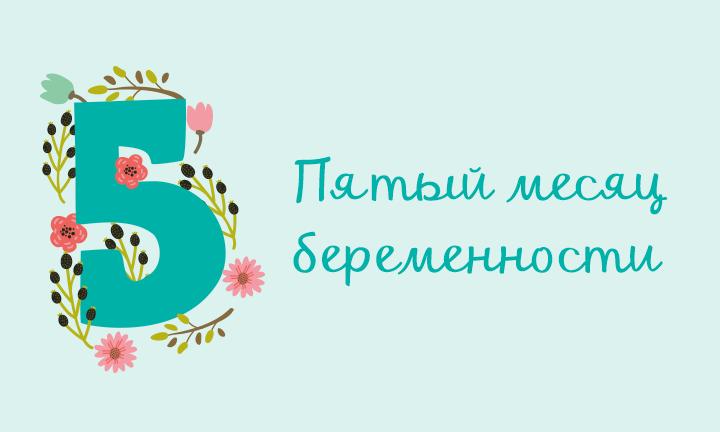 Беременность месяц за месяцем: пятый месяц