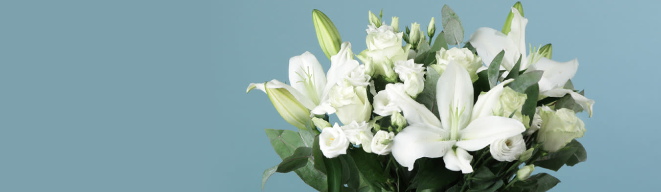 Flowers Plants Letterbox Flowers Next Day Delivery Moonpig