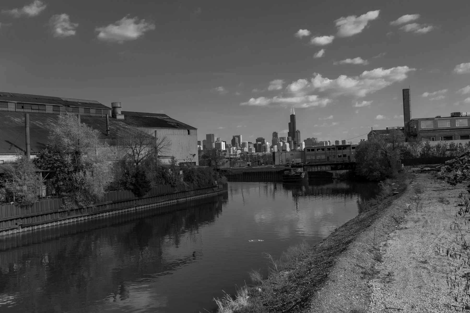 a shot of the Chicago skyline from the Webster street bridge just off of Ashland ave.