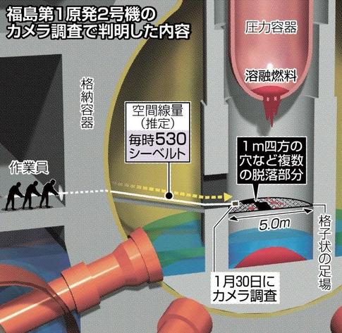 20170204-fudao-nuclear-1