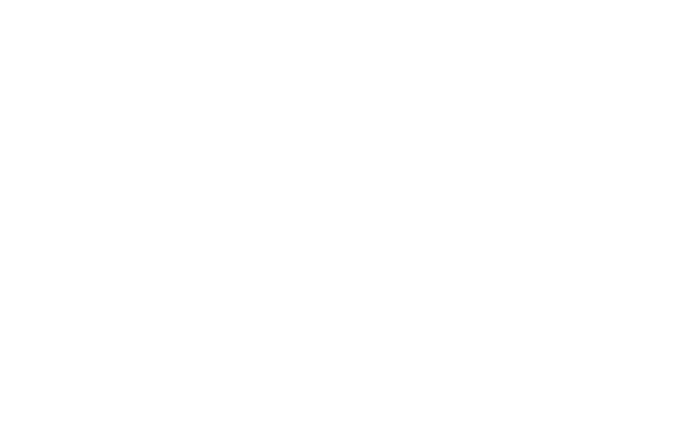 Tomorrowland Winter Logo