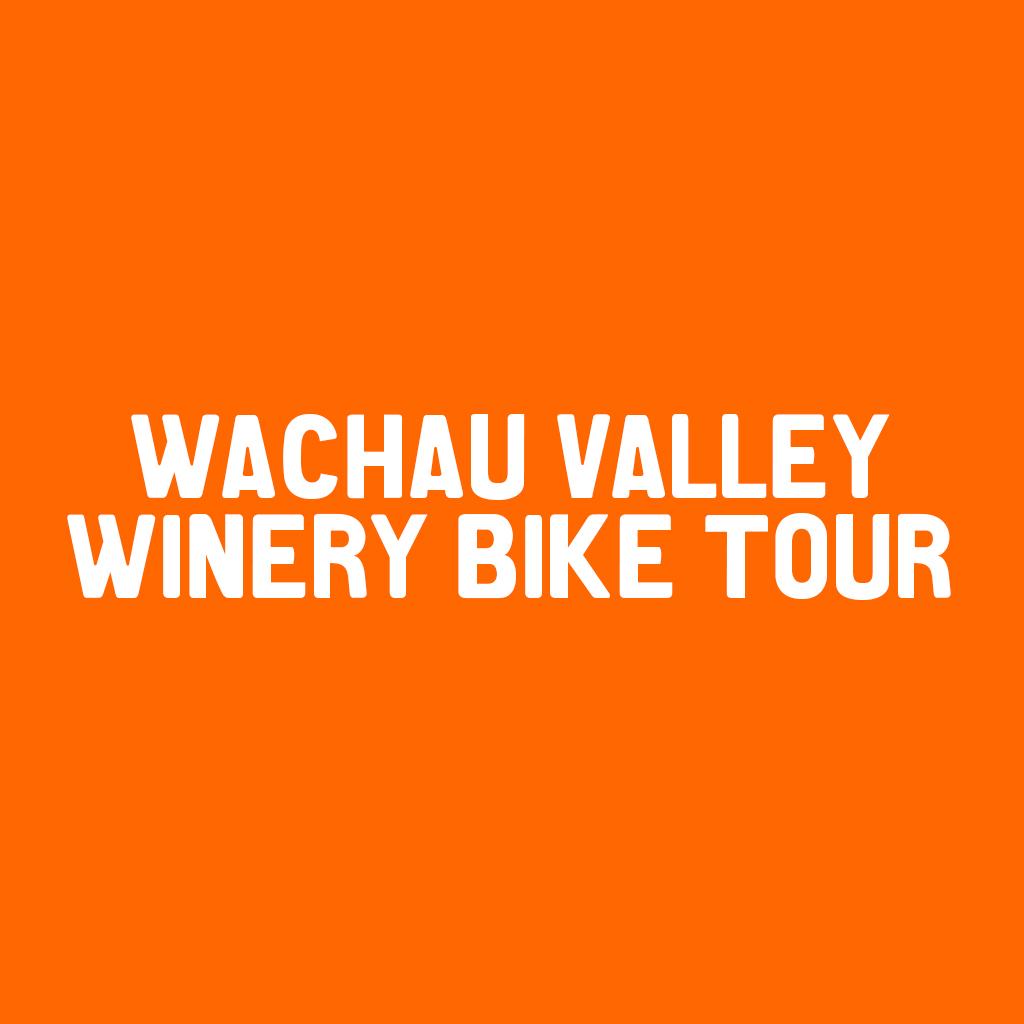 Wachau Valley Winery Bike Tour