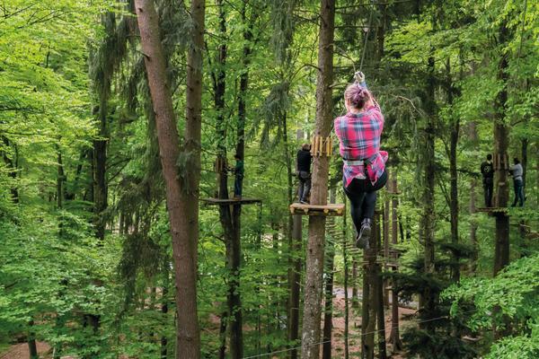 High Ropes Park