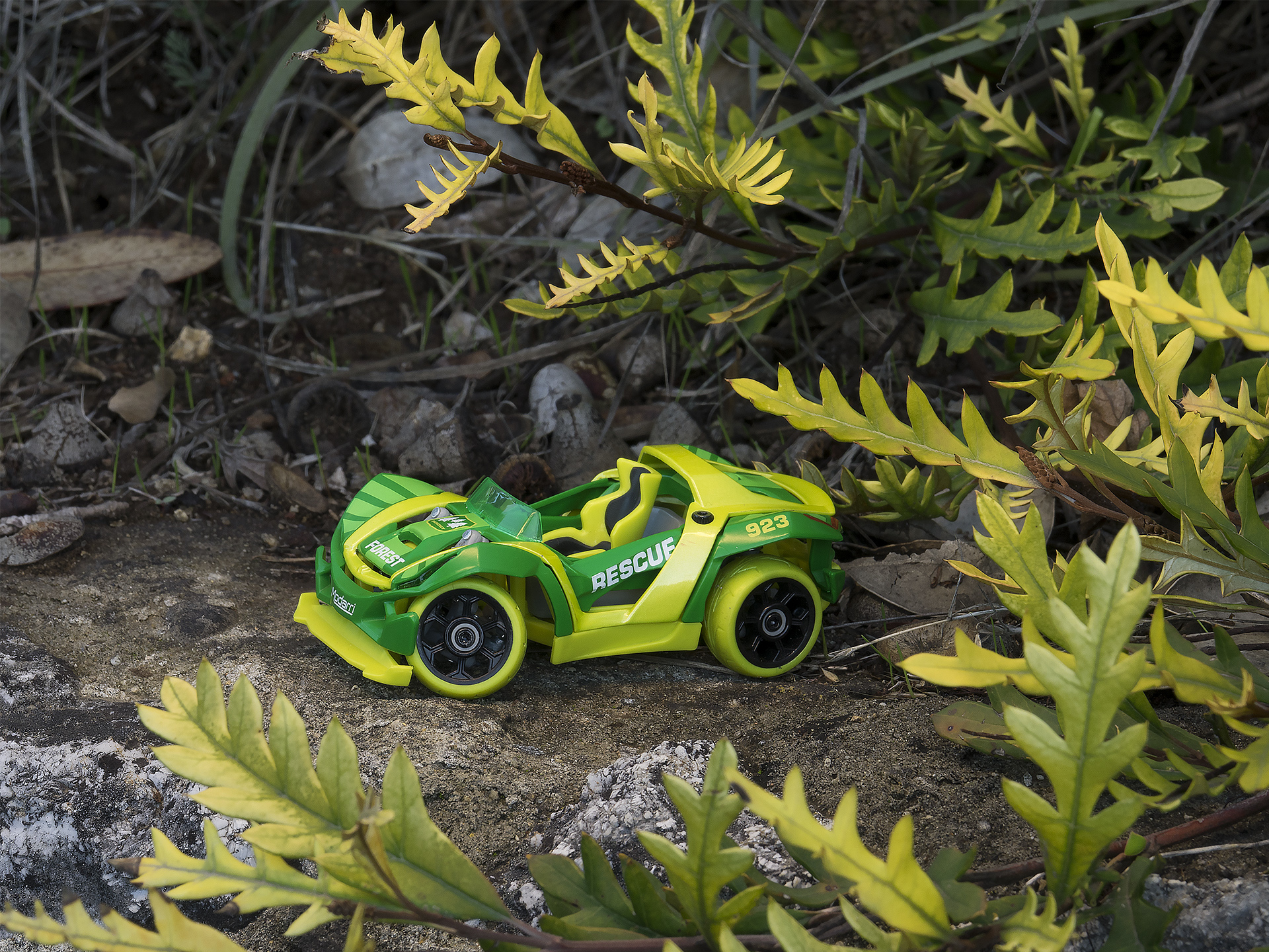 C1 Forest rescue green car nature lifestyle - compressed