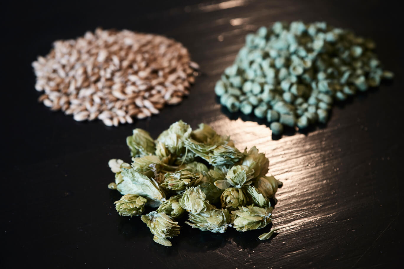 Hops, hops pellets and grains