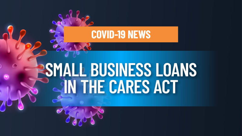 Dissecting the small business loans in the CARES Act COVID-19 stimulus package