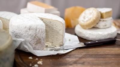 goat-cheese-vs-sheep-cheese