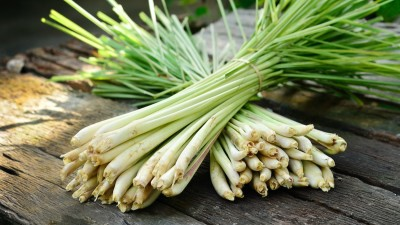 how-to-grow-lemongrass-in-your-home-garden