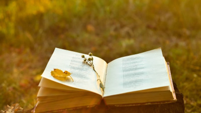 Book in field with flowers