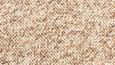 what-is-berber-carpet-explained
