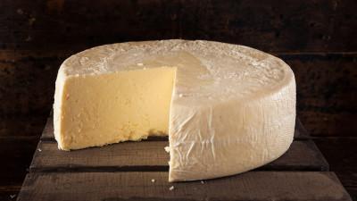 Wheel of cheese on dark wood