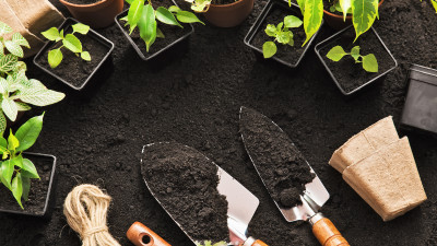 how-to-make-and-use-worm-tea-to-fertilize-your-garden