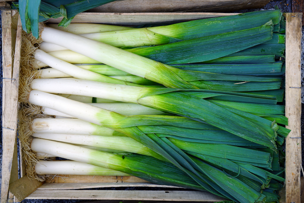 Scallions Vs Green Onions What S The Difference