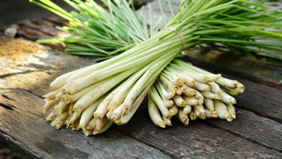 Bundles of lemongrass on wood