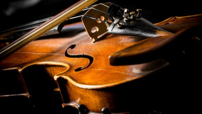 wood violin with black background
