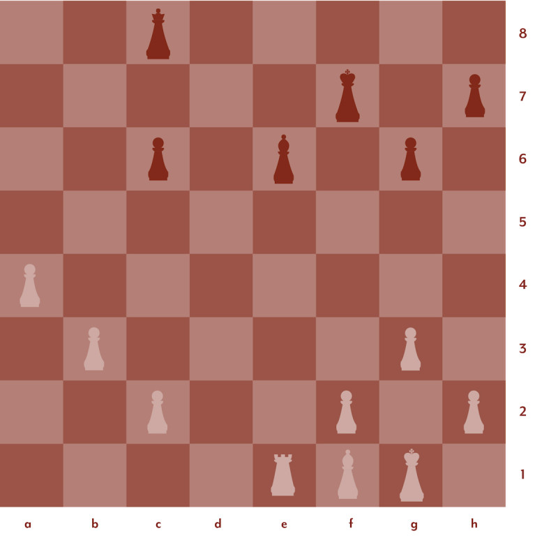 Diagram of chess set up in red and pink 2