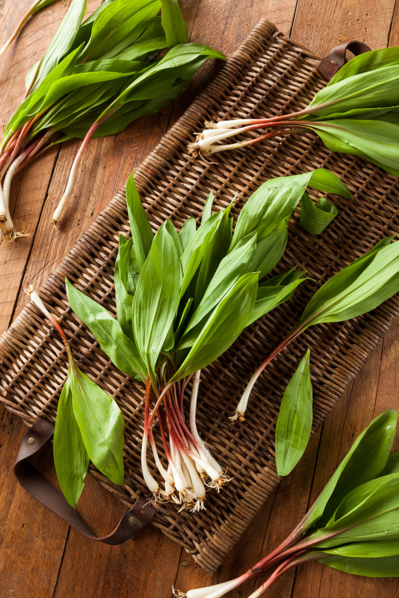 How To Pickle and Grill With Ramps - 2019 - MasterClass