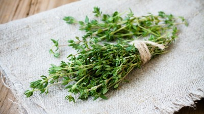 how-to-grow-thyme-in-a-home-garden
