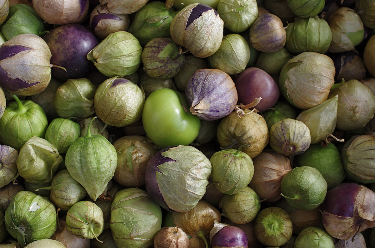What Are Tomatillos? Learn About the Ingredient, Cooking ...
