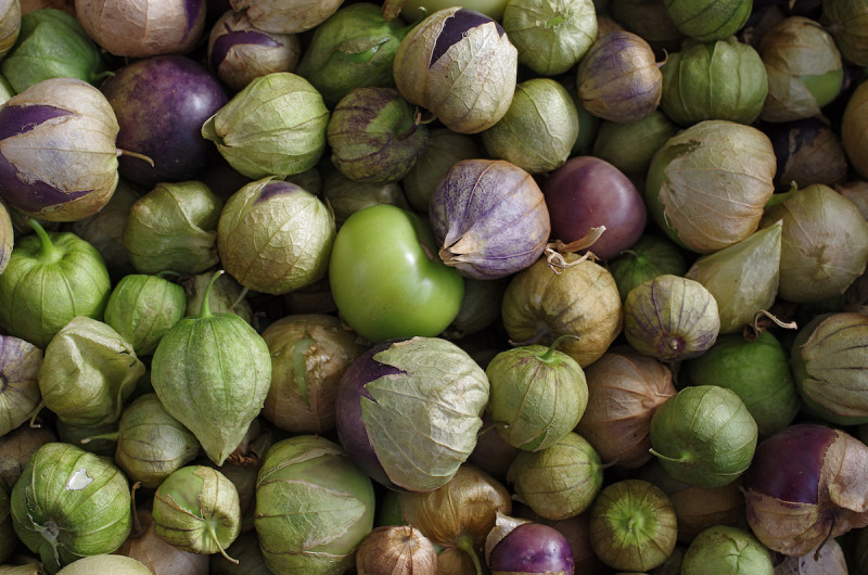raw tomatillos with their husk