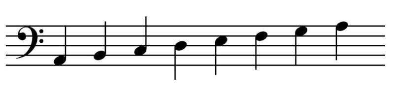 Bass Clef Staff Notation